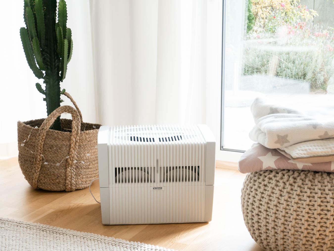 pflanzen gegen trockene raumluft pflanzen im bro pflanzen gegen trockene raumluft achtung. Black Bedroom Furniture Sets. Home Design Ideas
