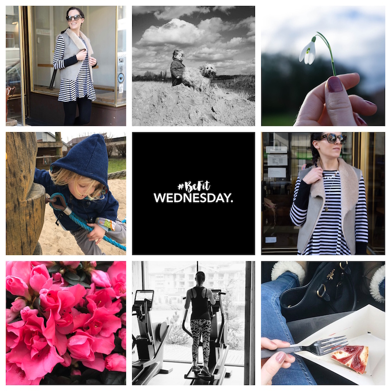 WEEKLY FAVES | Be.Fit.Wednesday, a Dog & Cheescake… #9