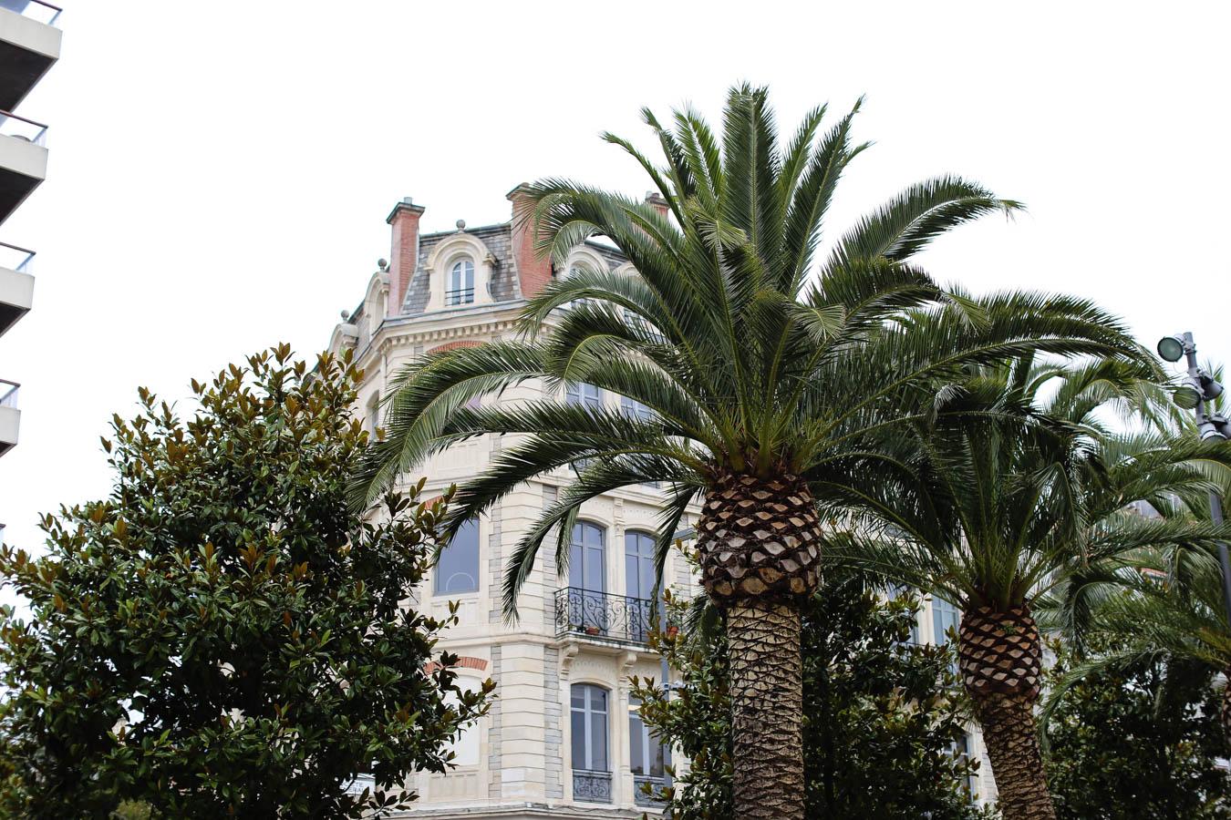 Reisebericht Biarritz Frankreich