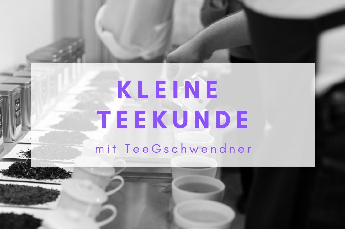 Die liebe zum Tee, eine kleine Teekunde und ein Einblick ins Tee-Unternehmen TeeGschwendner.