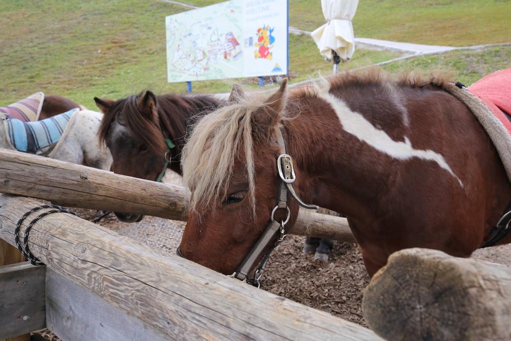 Ponyreiten im Sommer Funpark Fiss