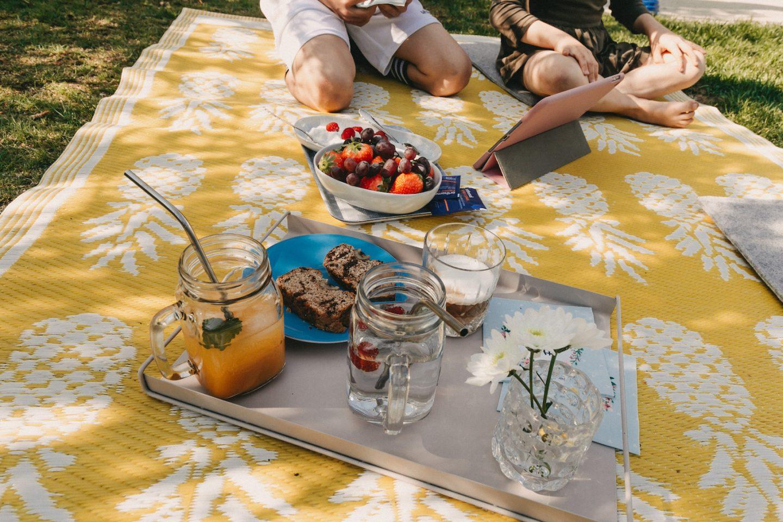 Picknick im Garten mit Obst, Kuchen und kalten Getränken