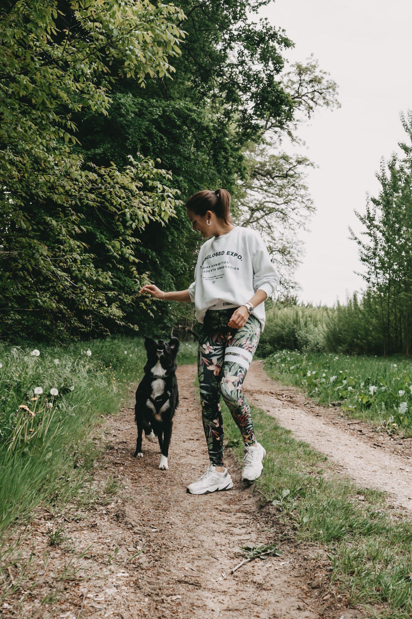 Frau beim Sport mit Border Collie im Wald